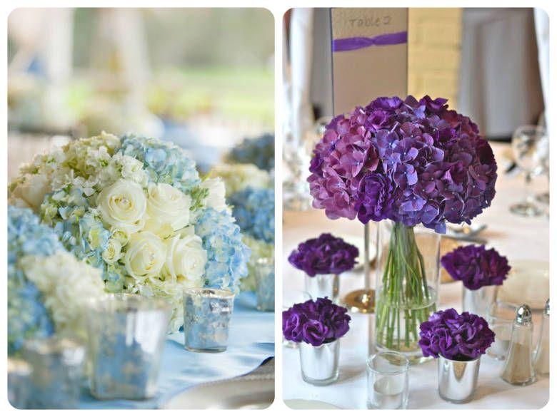 Fabuloso Hortênsias: as belíssimas flores naturalmente azuis | Lindas  VO53