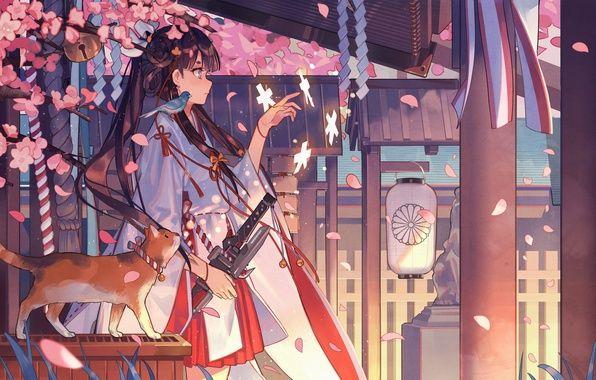 Фото обои кошка, магия, сакура, фонарь, храм, кимоно ...