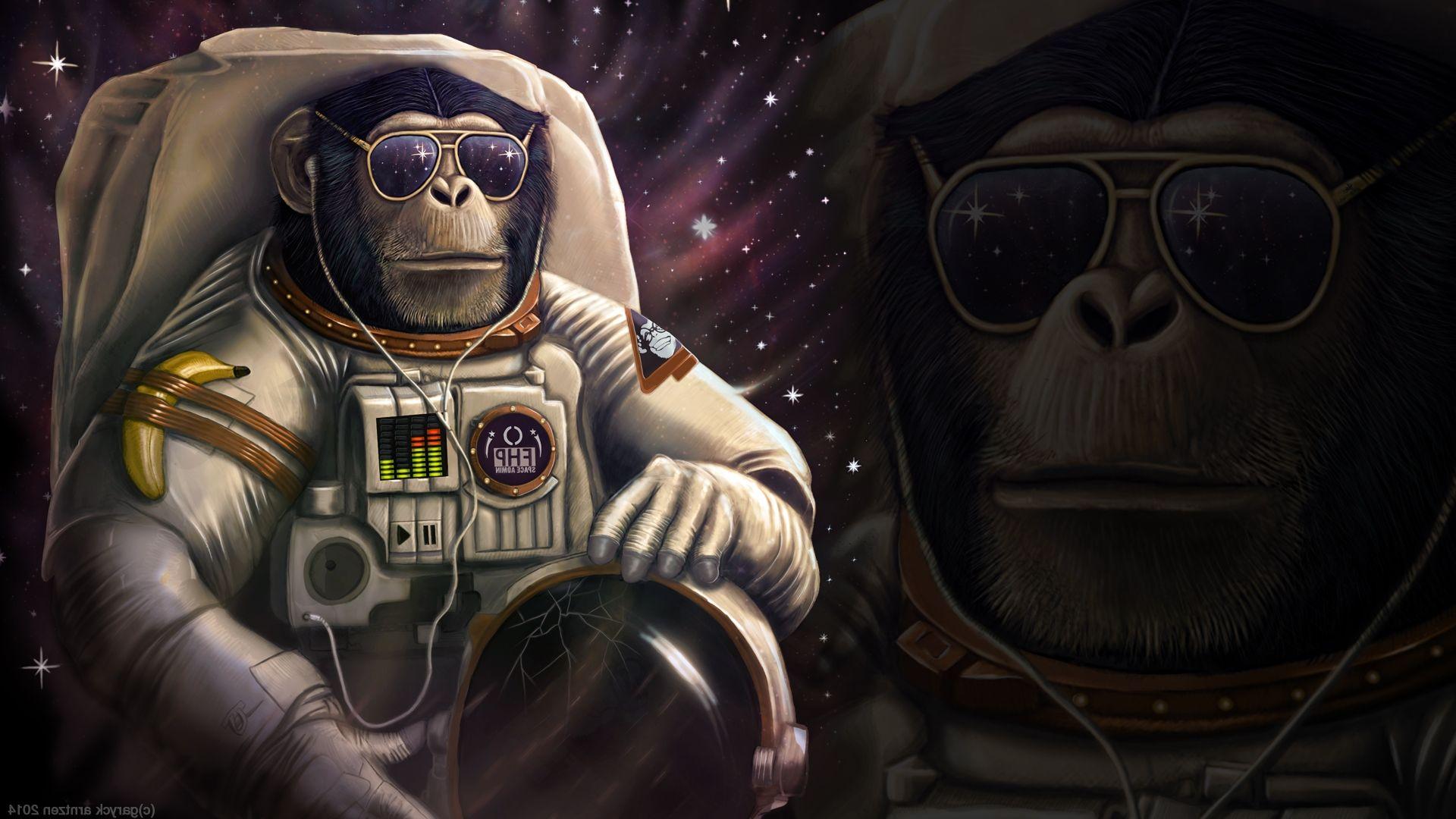 Monkey Astronaut Wallpapers HD Ideias de papel de parede