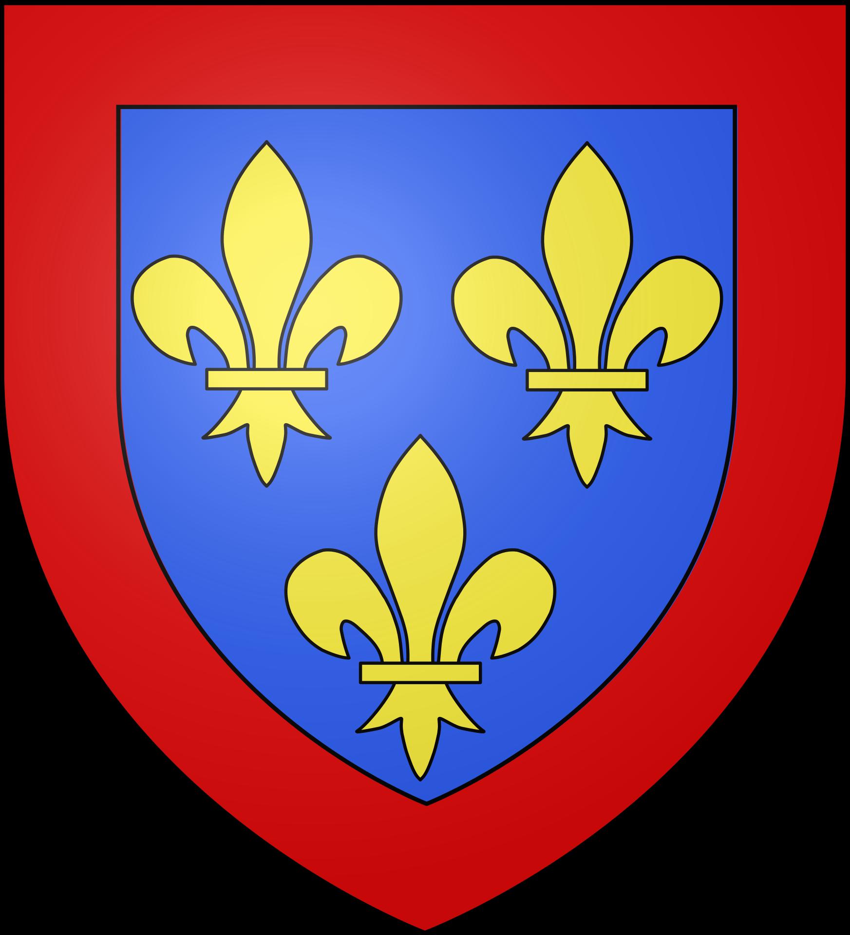 Risultati immagini per anjou coat of arms