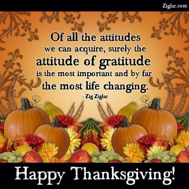Gratitude Thanksgiving Instagram Quotes Happy Thanksgiving Thanksgiving  Quotes Thanksgiving Comments Thanksgiving Quote