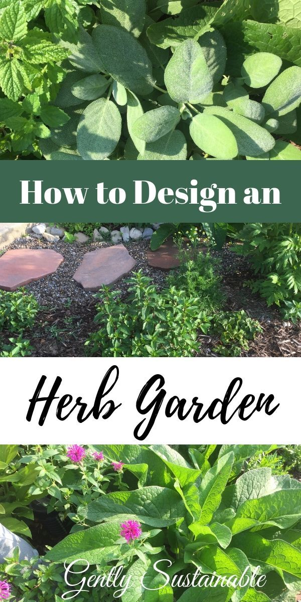 Check out how I took an ugly corner of my yard and created a beautiful and functional herb garden You can do it too