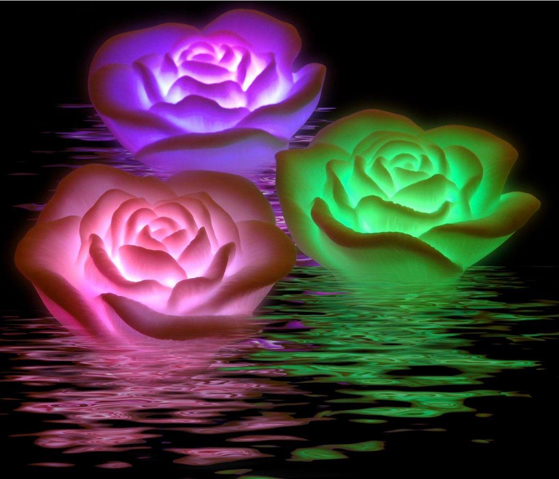Imagenes De Amor Con Movimiento More Imagenes Para Facebook