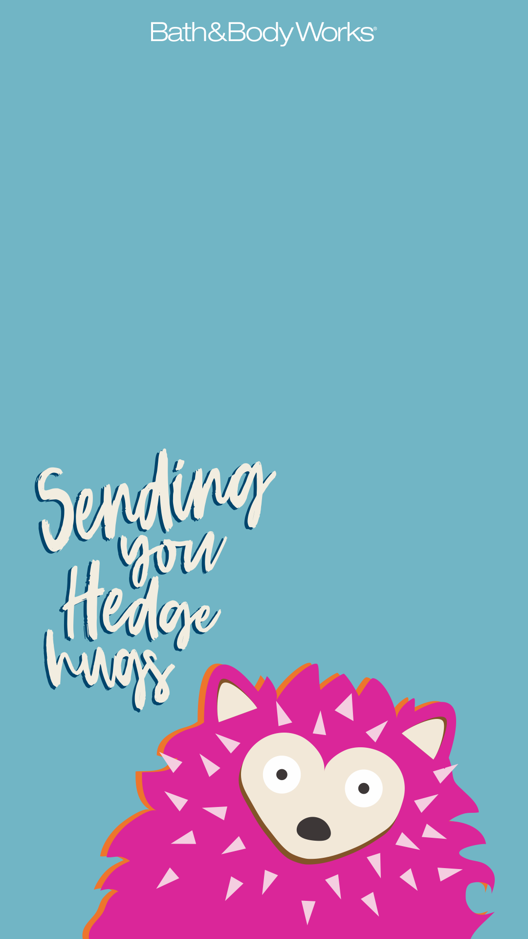 Hedgehog Iphone Wallpaper Words Wallpaper Funny Wallpaper
