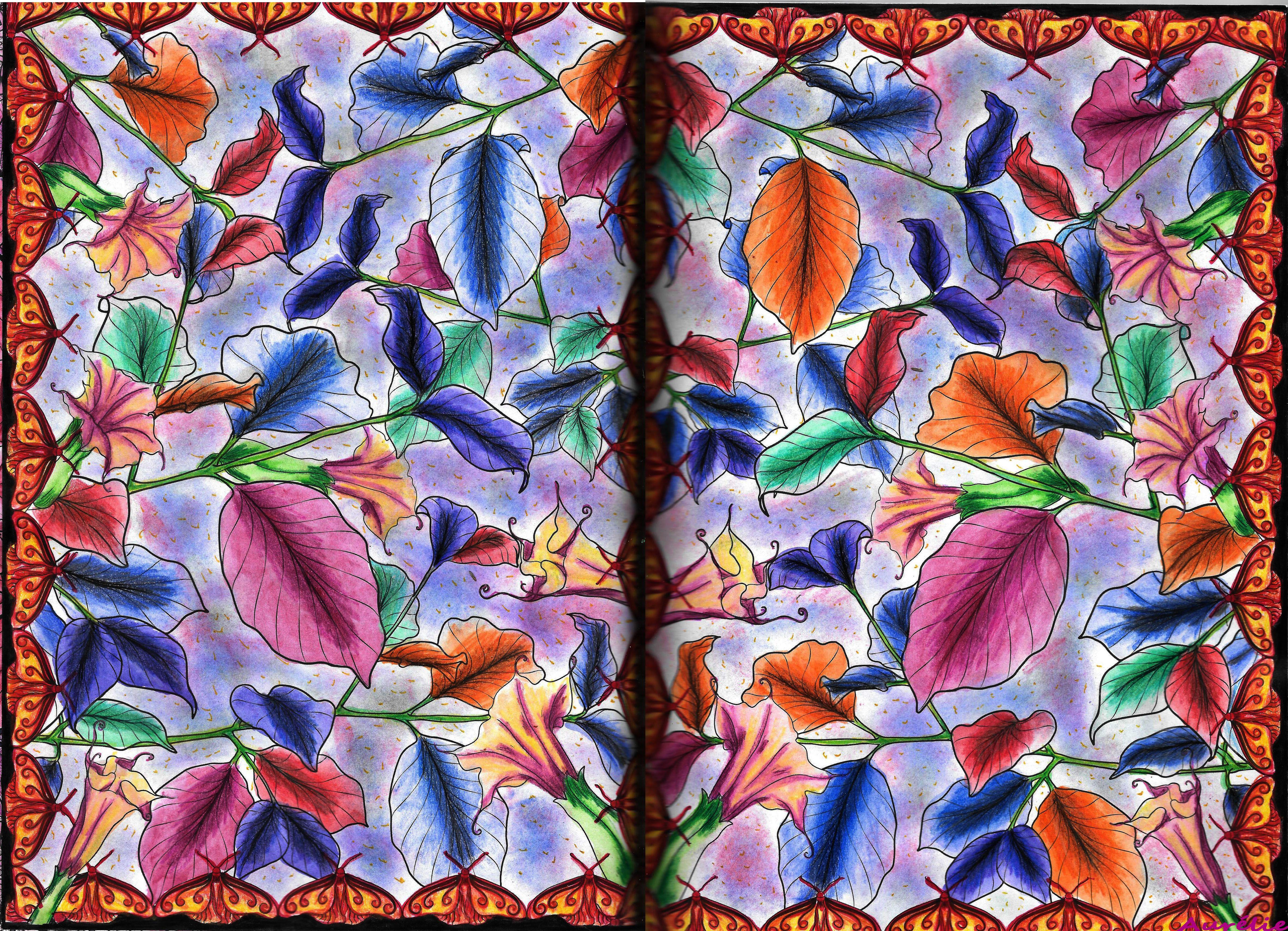 Pages forêt féerique pinterest