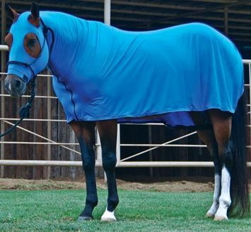 Full Body Sleazy With Images Horses Horse Blankets Western