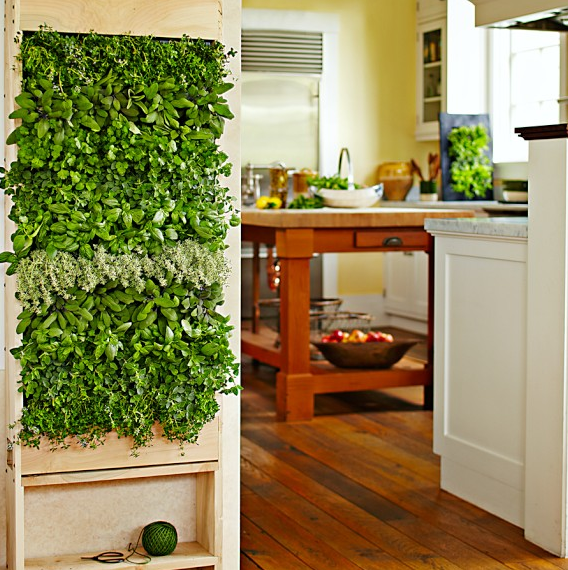 Indoor Herb Garden Spring Is Almost Here, And Now Is The Perfect Time To  Plant Seeds And Start Growing Your Garden Indoors. Spice Versa U2013 Space  Saving ...