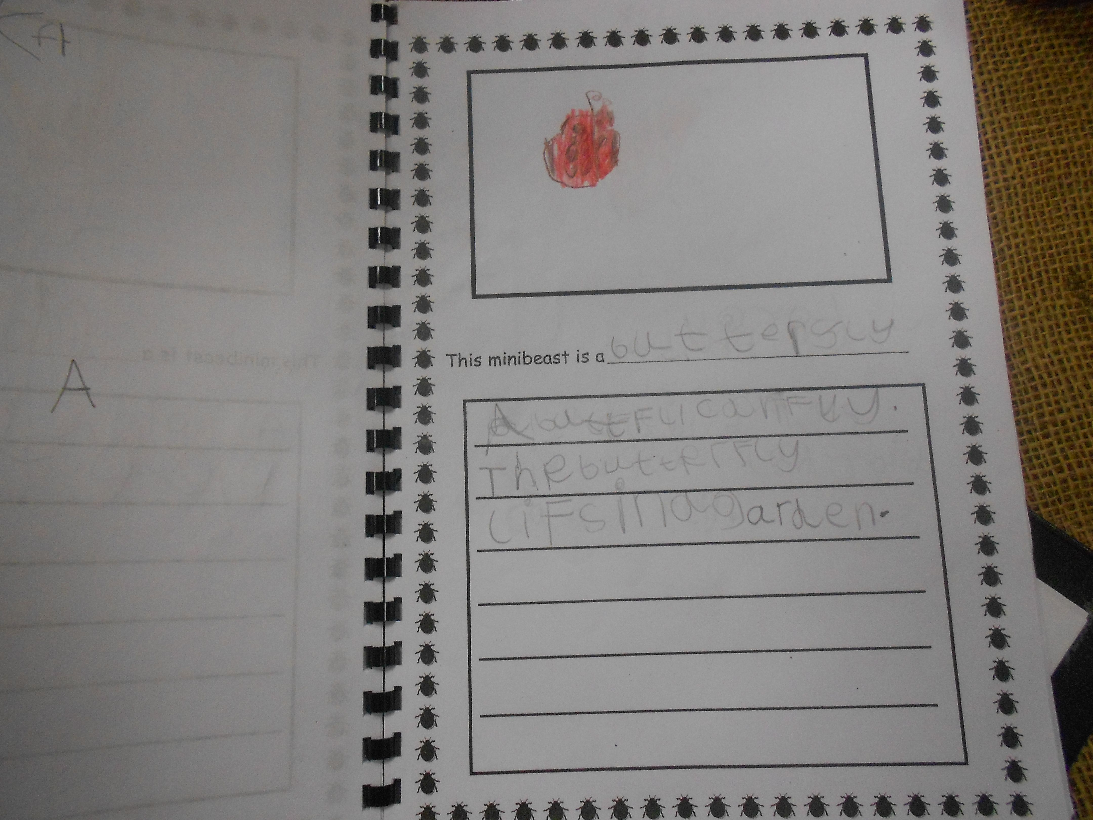 The Children Created Their Own Minibeast Encyclopedia