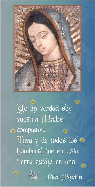 Tarjetas y oraciones catolicas tarjetas virgen de guadalupe tarjetas y oraciones catolicas tarjetas virgen de guadalupe thecheapjerseys Choice Image