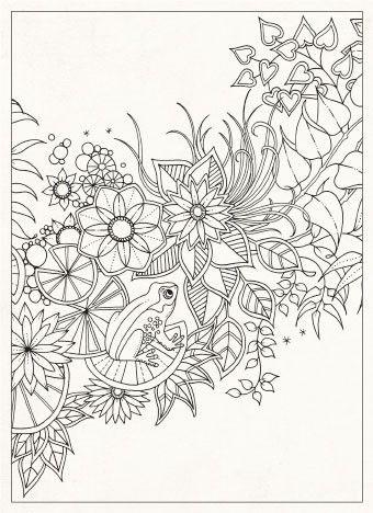 Amazing The Secret Garden Coloring Book 45 Johanna Basford The