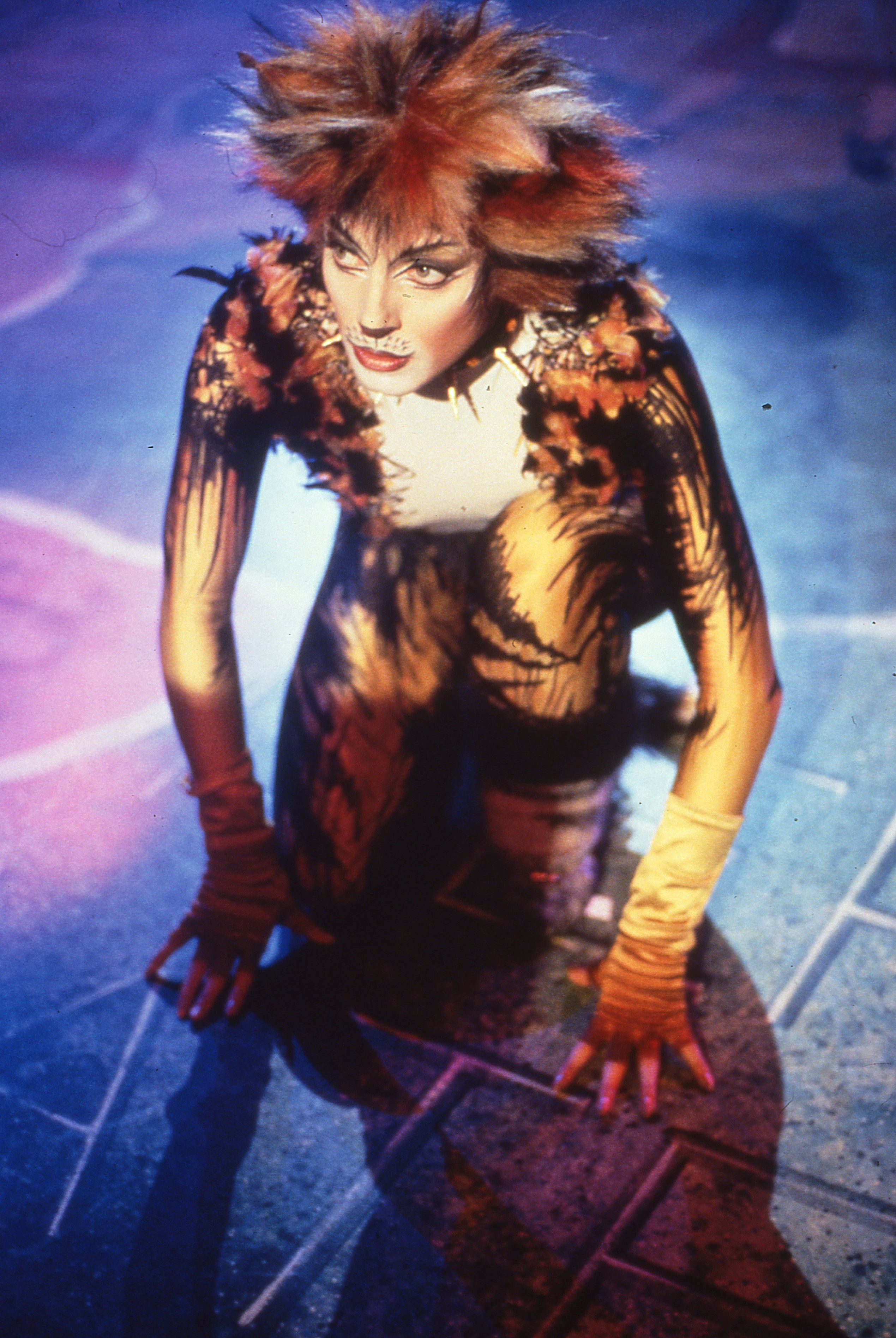 Cats On Screen Cats The Musical Jellicle Cats Cats Musical Musicals