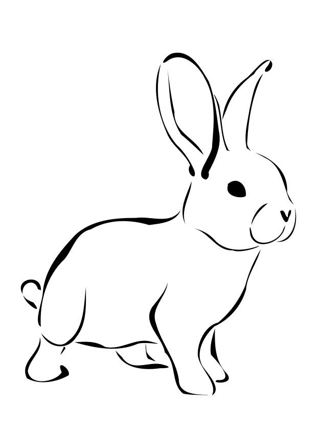 Coloring Page Rabbit Dl27276 Jpg 620 875 Pixels Rabbit Drawing