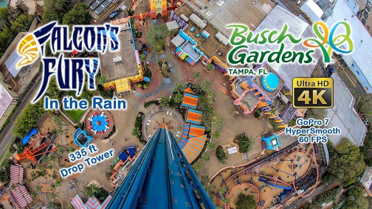 8334f6ac406c21b52e11e0b028ec220f - Bring A Friend Busch Gardens 2019