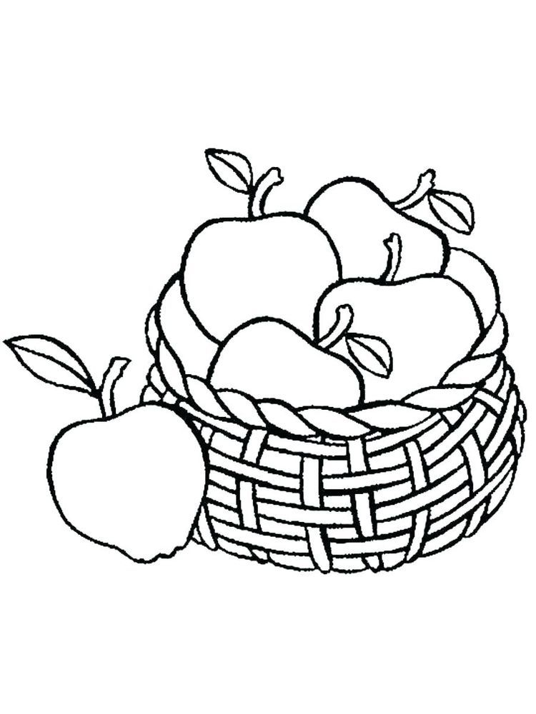 Parts Of The Apple Freebie Free Preschool Apple Coloring Pages