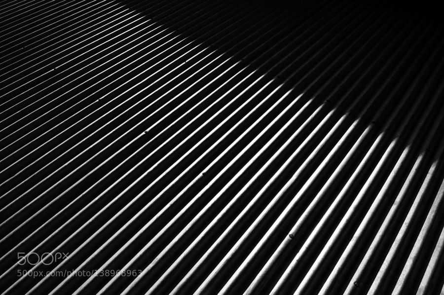 Lines IV by sachadesensi