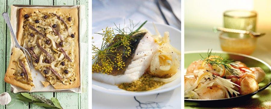 Comment Cuisiner Le Fenouil Cuisiner Le Fenouil Comment Cuisiner Le Fenouil Et Comment Cuisiner