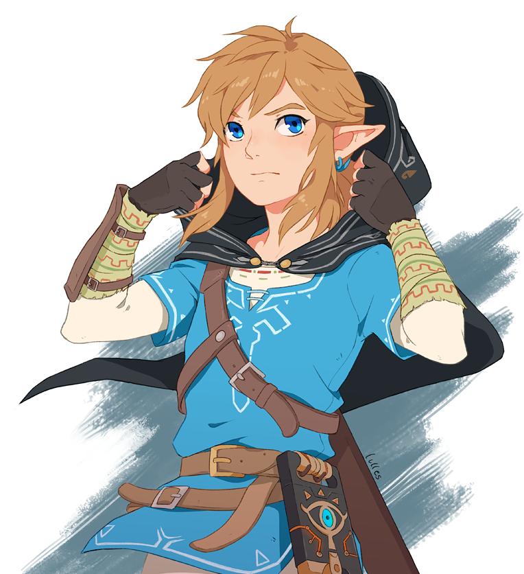 The Dream Walker Hylian Hood Legend Of Zelda Breath Legend Of Zelda Memes Link Zelda Art