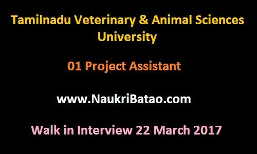 TANUVAS Recruitment 2017 - 01 Project Assistant - Walk in - project assistant sample resume