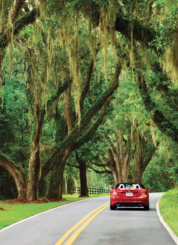 Florida Panhandle Road Trip  Weekend Getaway to Tallahassee