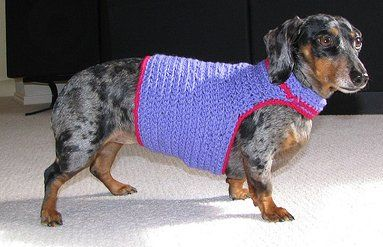 Crocheted Dog Sweaters Crocheted Clothes For Dogs Pearl Coats