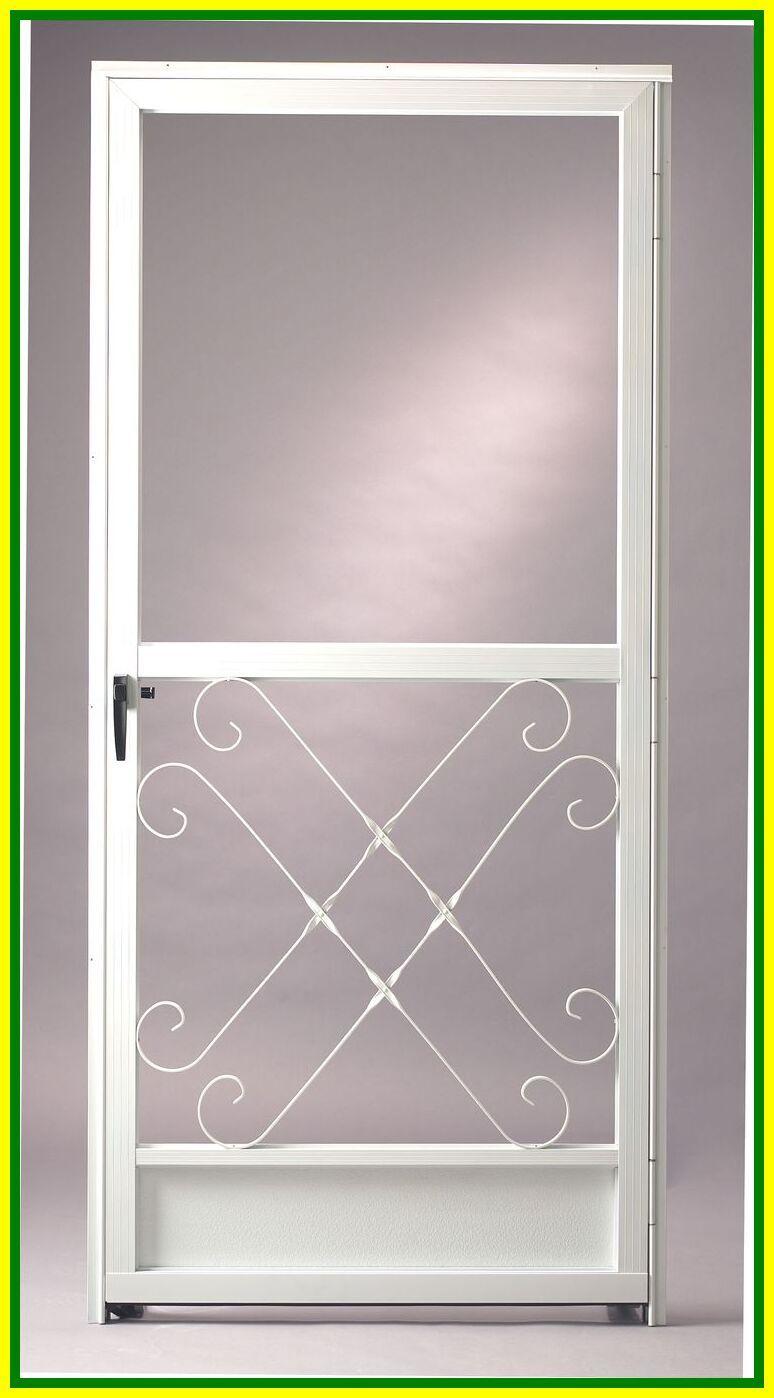75 Reference Of Storm Door With Screen Front Door In 2020 Aluminum Screen Doors Screen Door Storm Doors With Screens