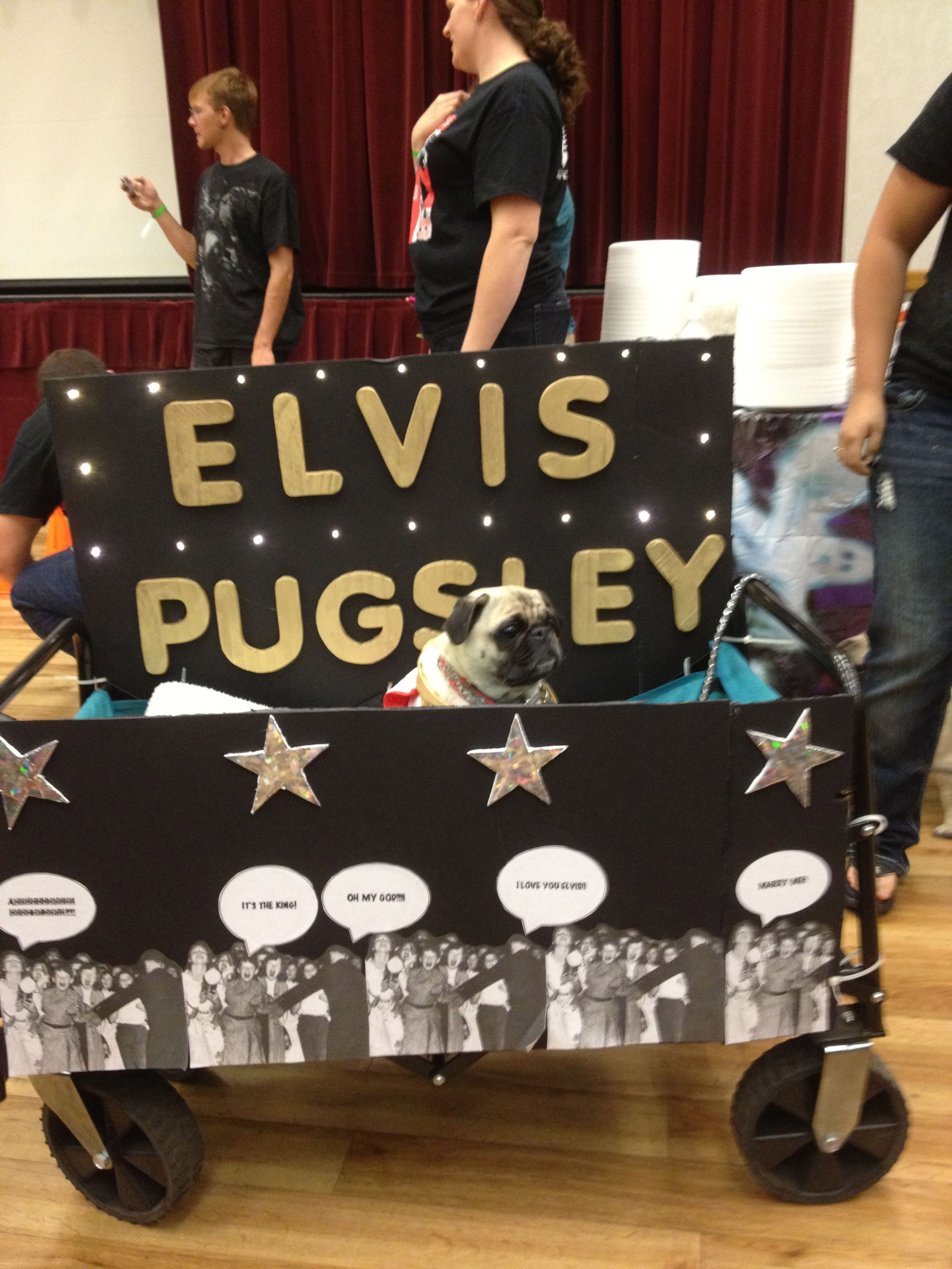 Elvis Pugsley
