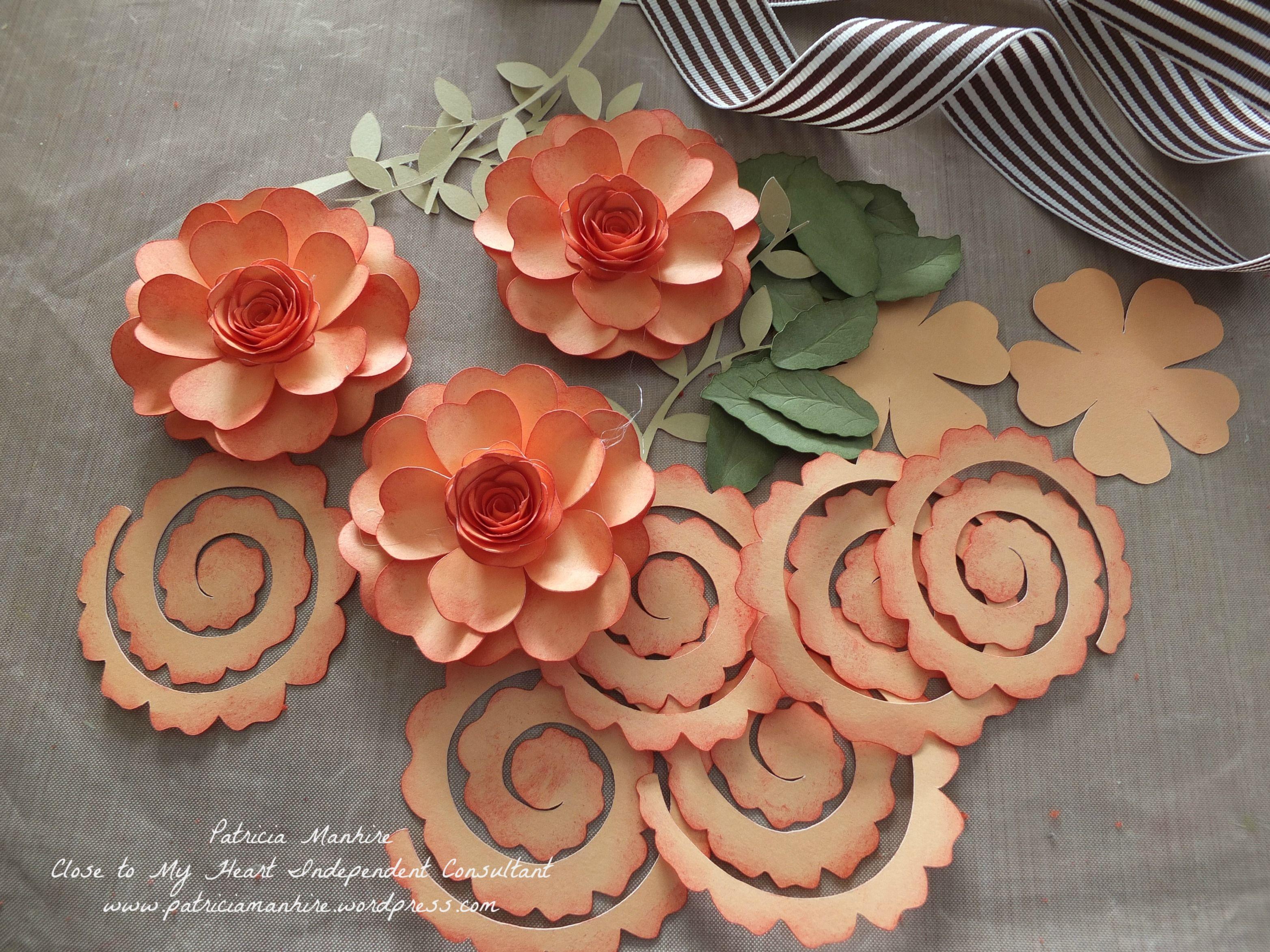 Having Fun With Ctmh Cricut Cartridges Paper Flowers 3d Paper