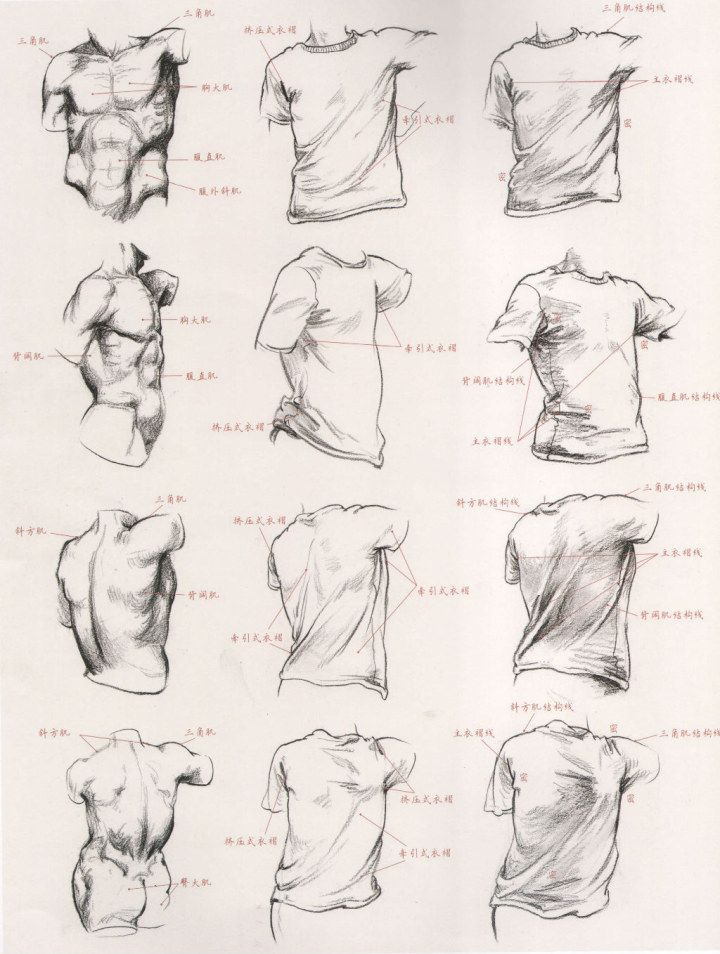 Roupa+Corpo | 基礎 | Pinterest | Drawings, Anatomy and Art reference