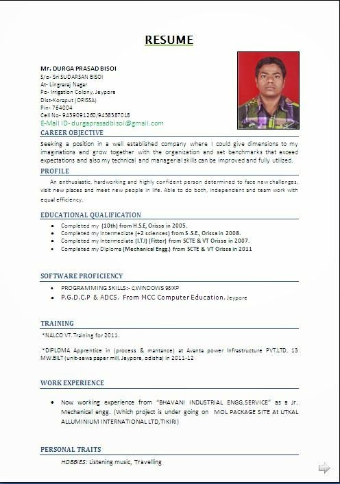Cv Examples Pdf Sample Template Example Ofexcellent