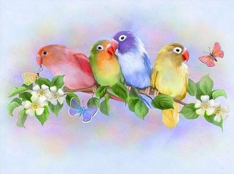 colorful love birds diamond painting kit bird houses