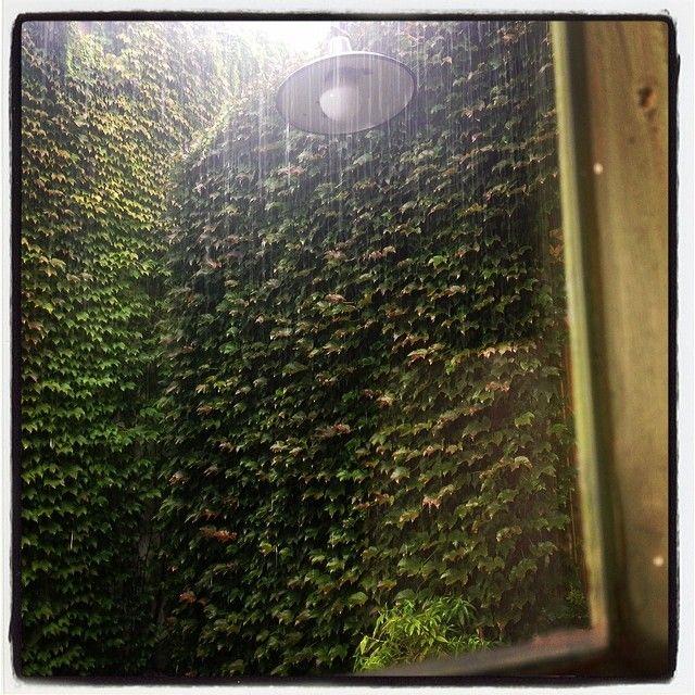 Lluvia en el jardin de Juliana Lopez May