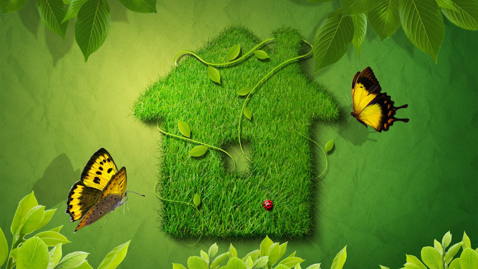 Image For Free Grass House With Butterfly 3d Hd Wallpaper Iraq