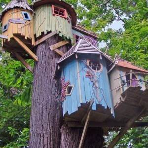 The Coolest Treehouses In The World Tree Houses