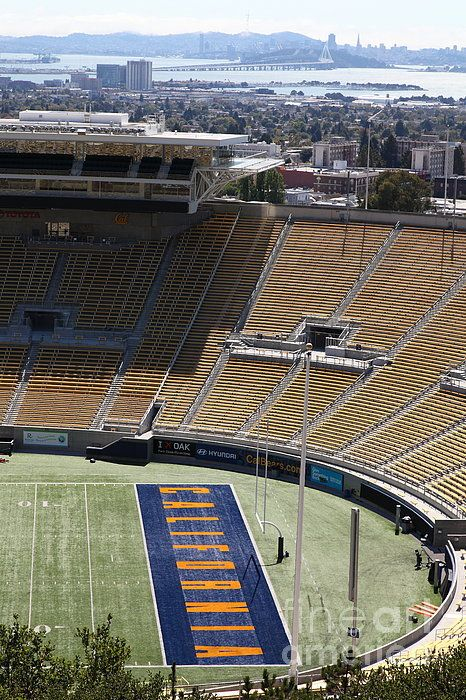 Cal Golden Bears California Memorial Stadium Berkeley California 5d24666 Poster By Wingsdomain Art And Photography In 2020 Berkeley California Cal Golden Bears Stadium