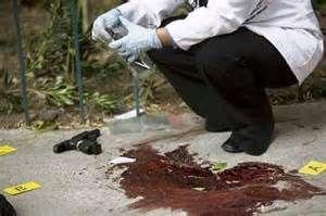 medicine forense - Bing Imágenes