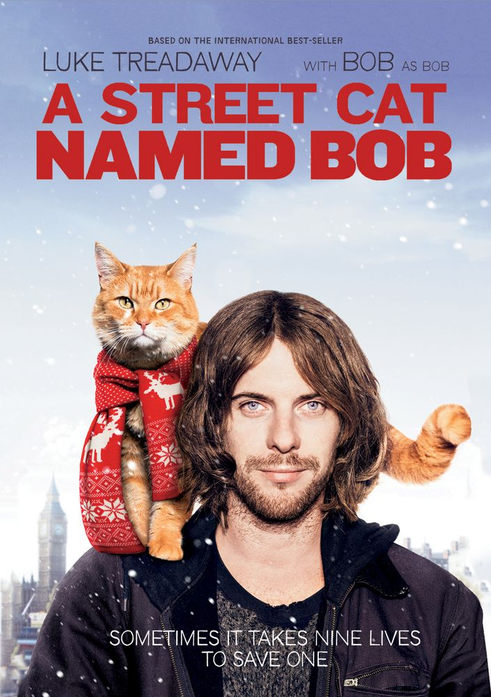A Street Cat Named Bob [DVD] [2016] Cat names, Movie