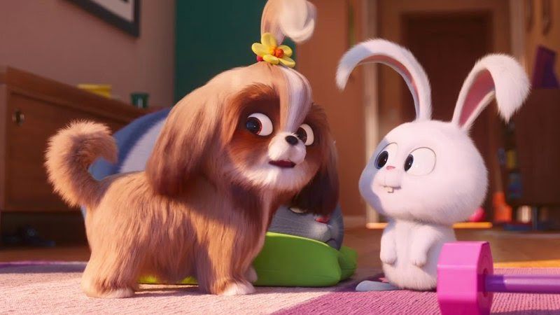 The Latest Secret Life Of Pets 2 Trailer Introduces Daisy Secret Life Of Pets Pets Movie Secret Life