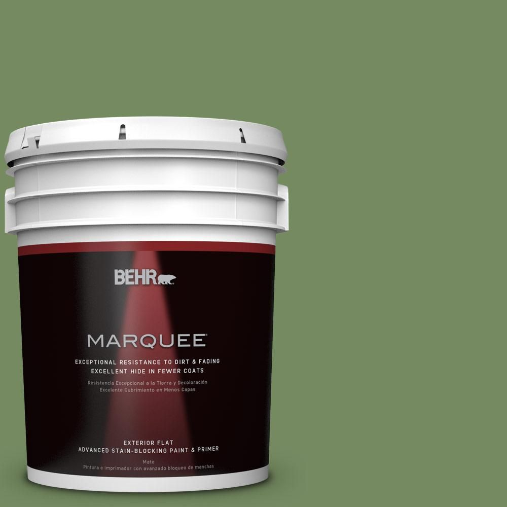 BEHR MARQUEE 5-gal. #M380-6 Fern Canopy Flat Exterior Paint