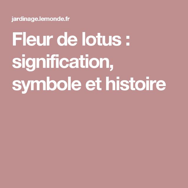 fleur lotus symbole signification. Black Bedroom Furniture Sets. Home Design Ideas