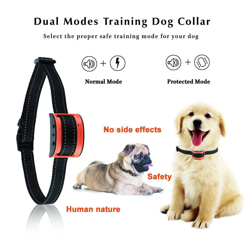 Oternal Bark Collar Stop Dog Barking Humane And Harmless Anti Bark