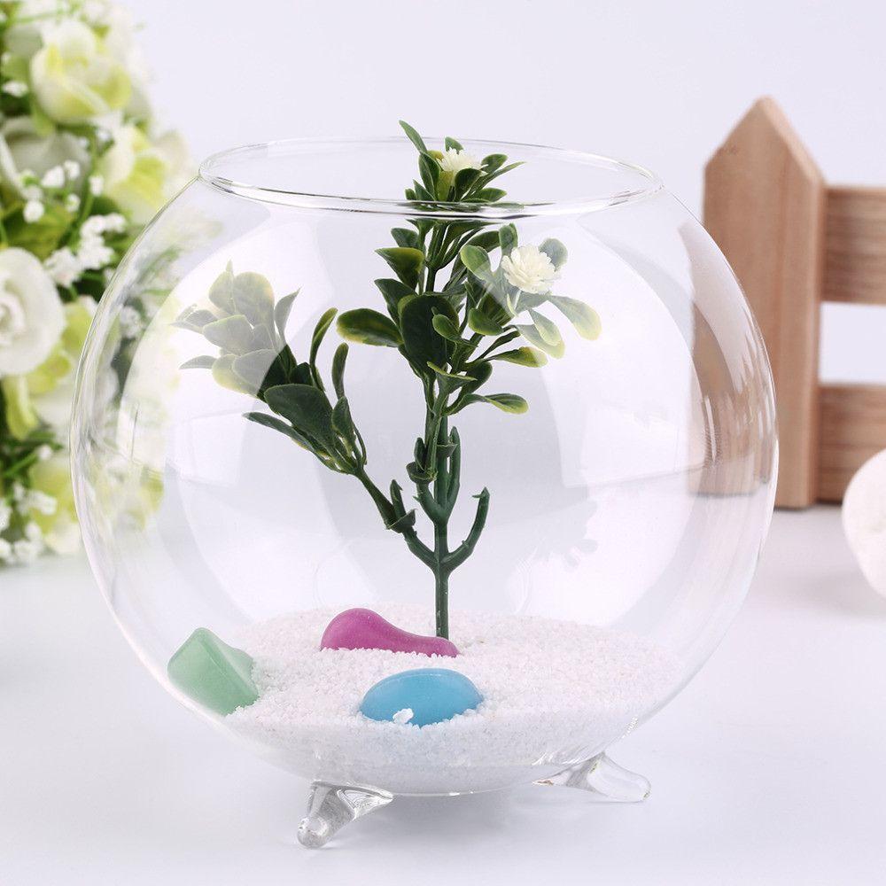 Tripod Support Round Shape Glass Plant Flower Landscape Vase