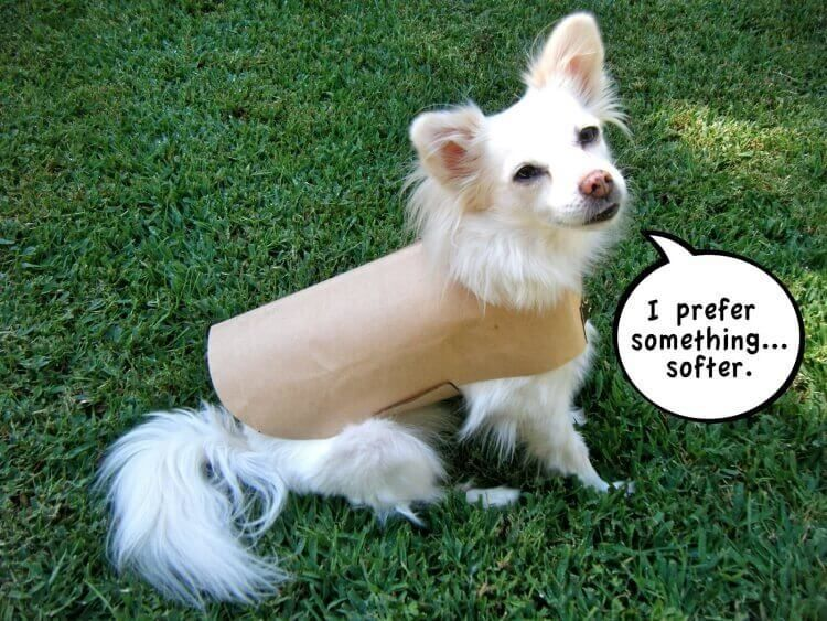 Einfacher Regenmantel für Hunde nach eigenem Schnittmuster