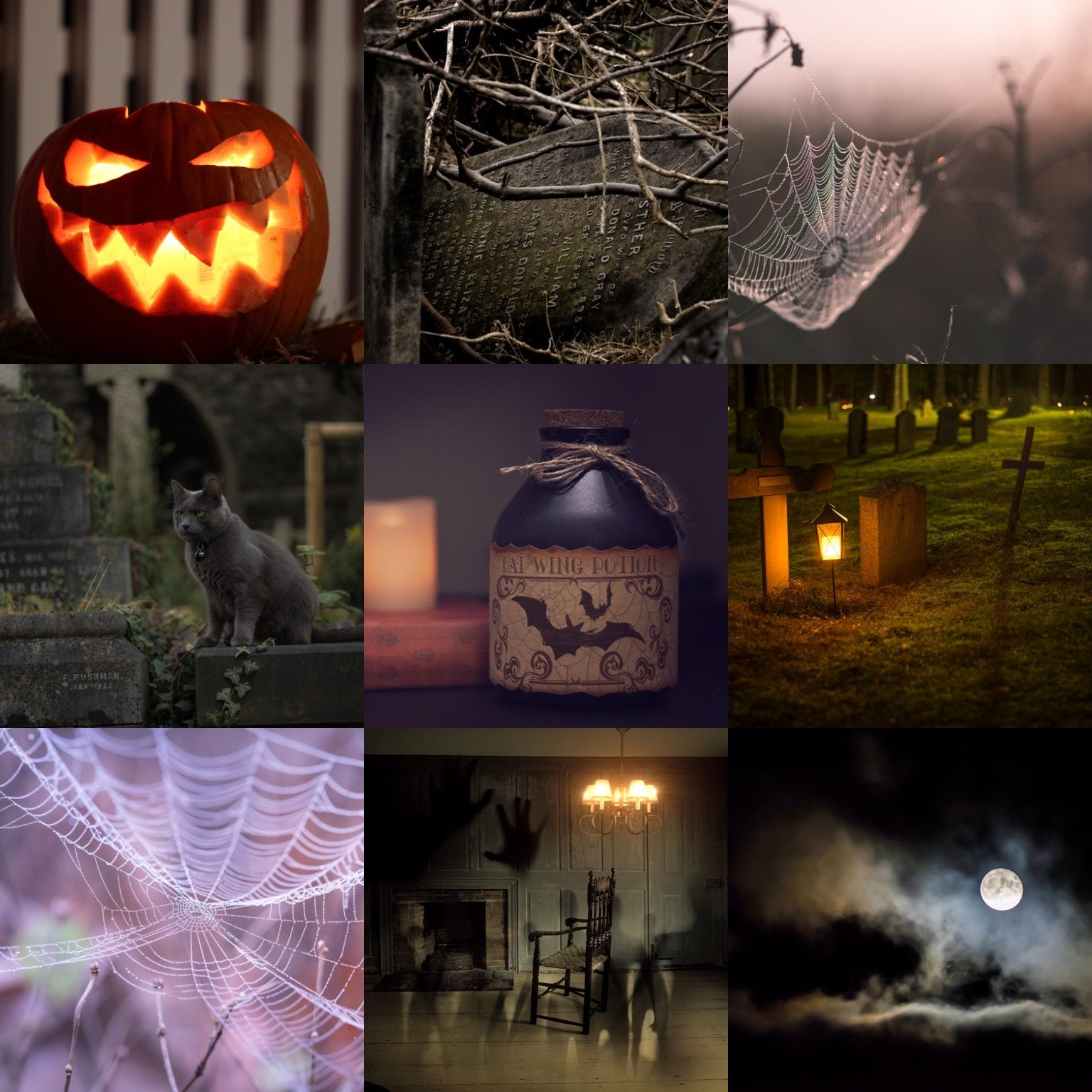 Pin by kay m on holidays halloween pinterest holidays