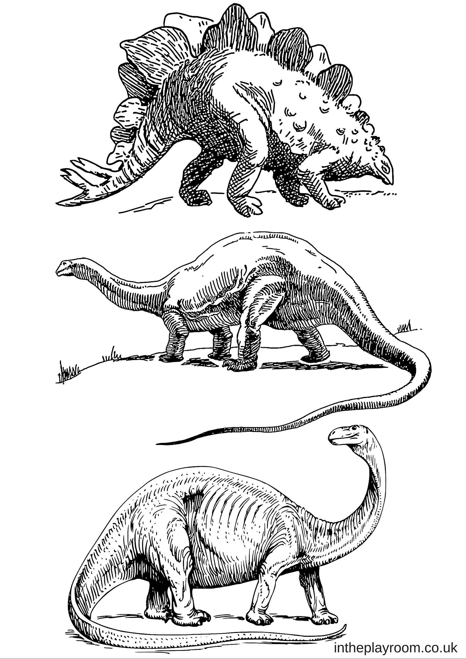 Dinosaur Colouring Pages For Q Dinosaur Coloring