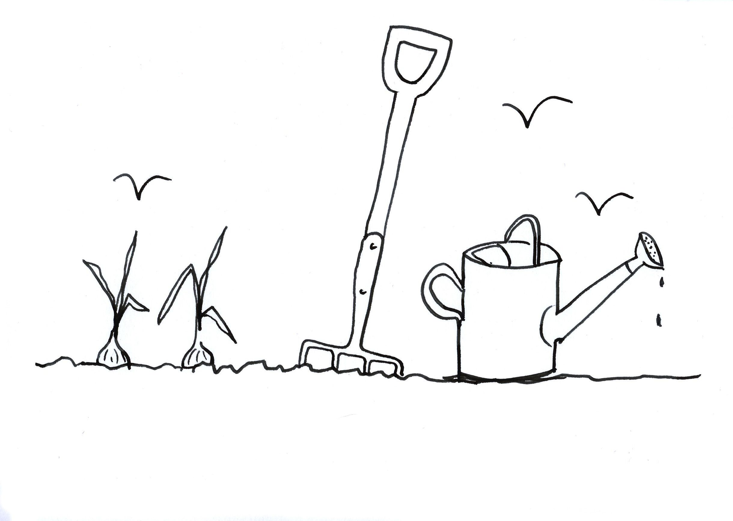 Doodle by Alan Titchmarsh for National Doodle Day 2014