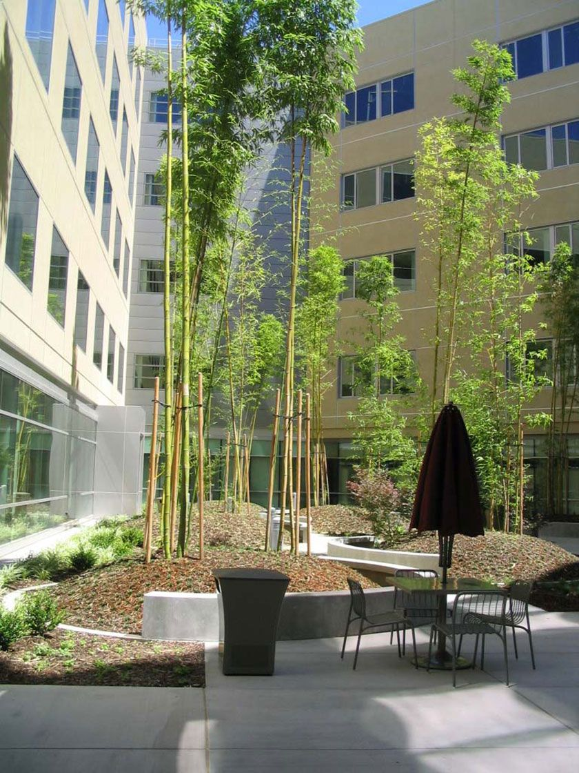 Pollock Landscape Architects | Kaiser Medical Center Templated ...