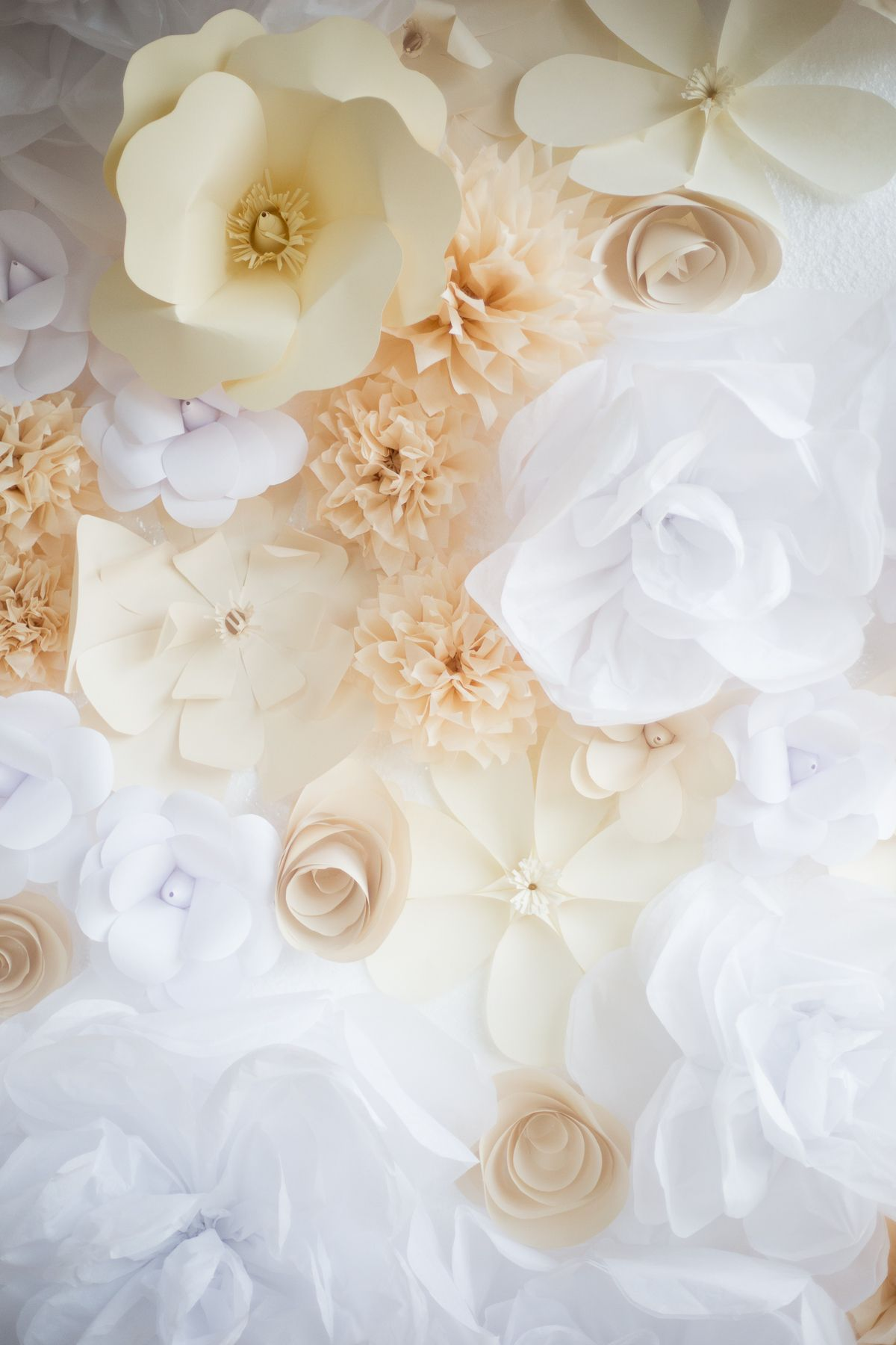 Ab really job pinterest the flowers flower wall and flower