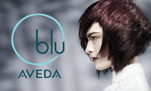 One, Three, or Five Blowouts with Hair-Spa Treatments at Blu Aveda Salon (Up to 67% Off)