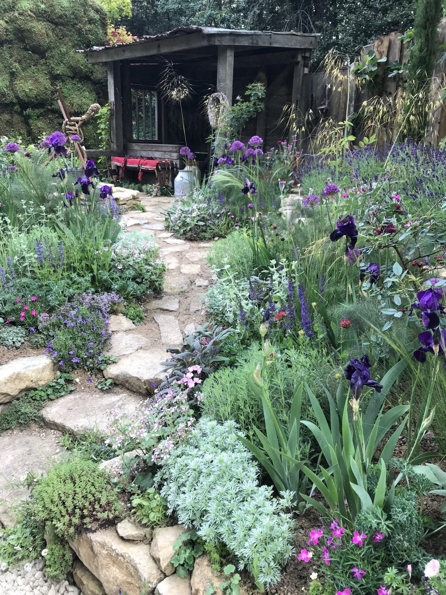 14 Things at RHS Chelsea Flower Show 2019  Jack Wallington Garden Design Clapham in London