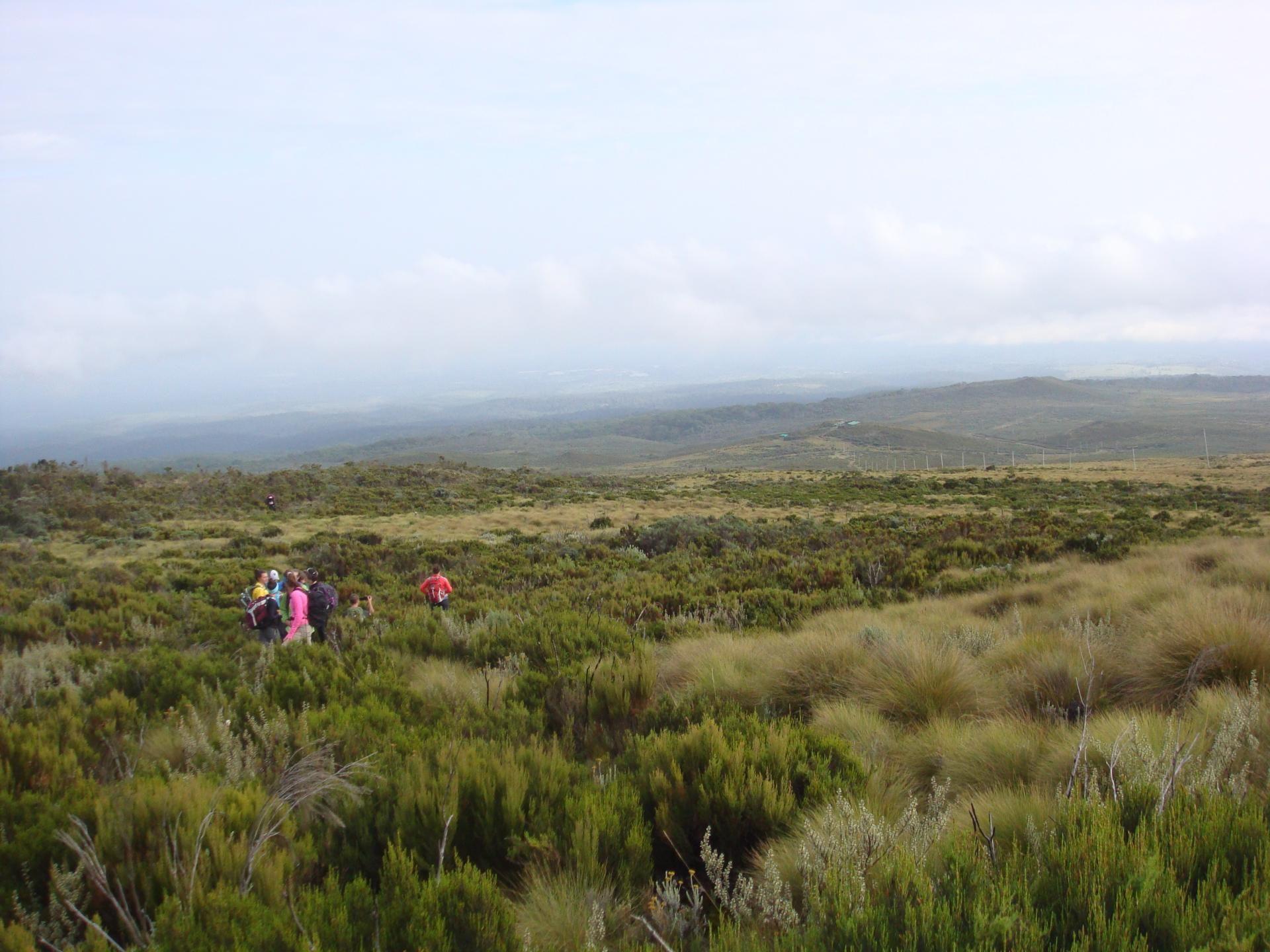 Trekking Mount Kenya,mountaineering,mount kenya climbing
